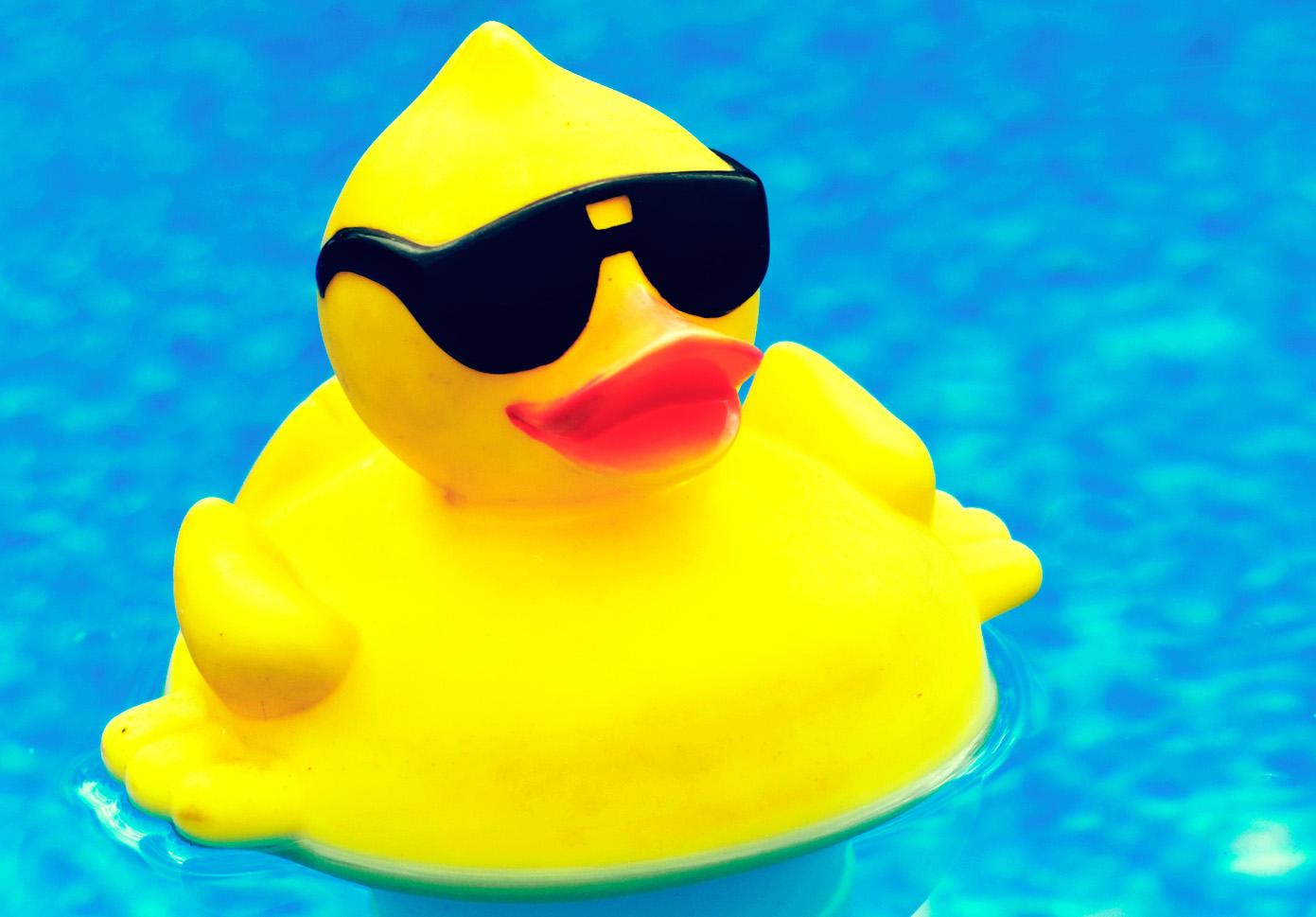 ducking glasses